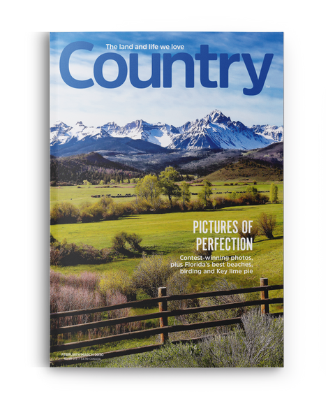 Country Magazine - Single Issue