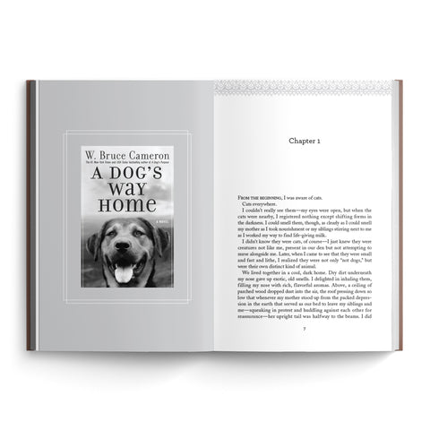 A Dog's Way Home Collection (Volume 355)