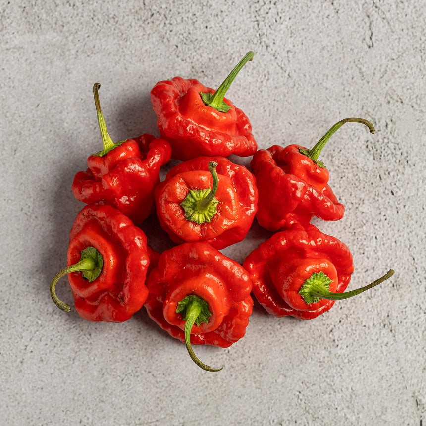 Scotch Bonnet Red