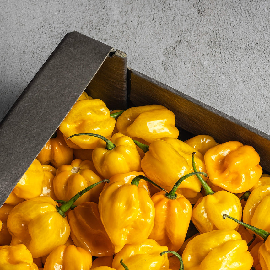 Habanero Yellow (150gram)