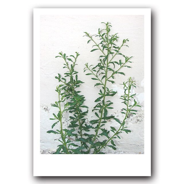 Modern Green Plant Abstract Print