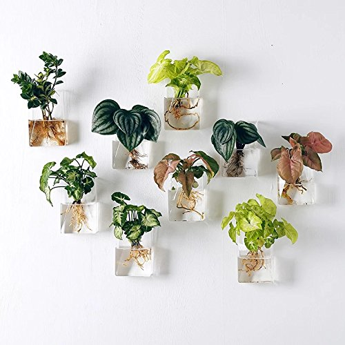 Set of 4 Wall Mount Hanging Planters