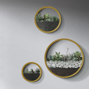 Modern Round Wall Planters