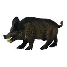 CollectA Med Wild Boar 88363