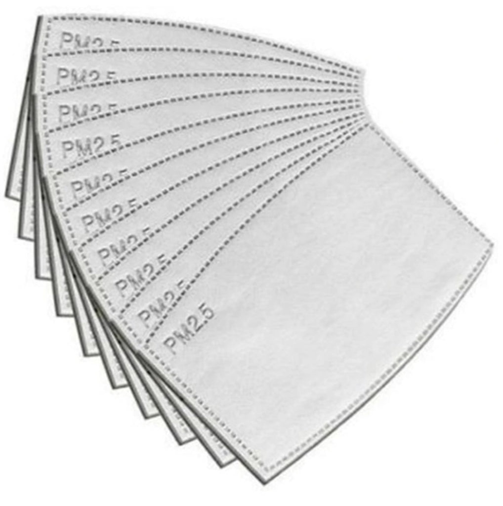 PM2.5 Filters - Pack of 10
