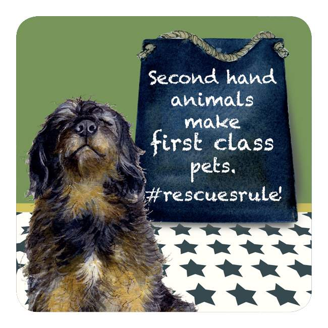 Little Dog Laughed - Rescue Rules - Coaster