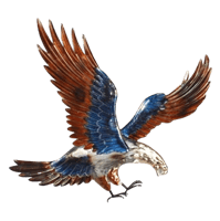 American Eagle - Coloured - Large