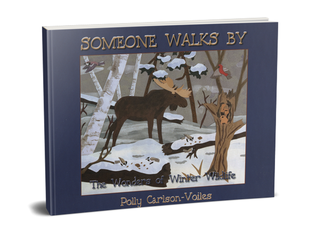 Someone Walks By - Softcover