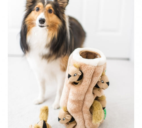 Outward Hound Hide-a-Squirrel Puzzle Toy for dogs