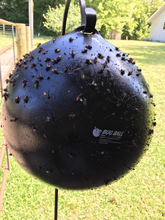 Load image into Gallery viewer, Wholesale of Bug Ball Starter Kit