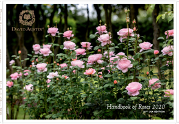 David Austin Roses - USA 2020 Handbook of Roses Cover