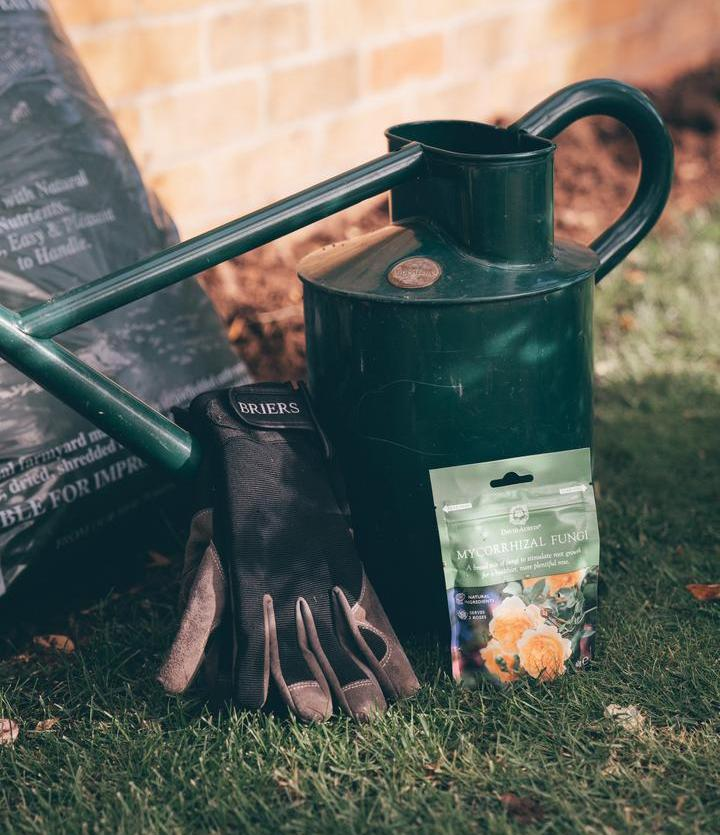 David Austin watering can, mycorrhizal fungi and Briers gloves