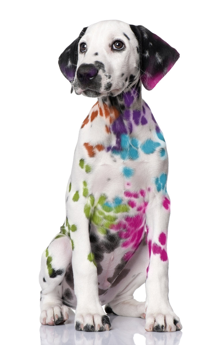 Artify Life Dalmatian - Product with a Purpose