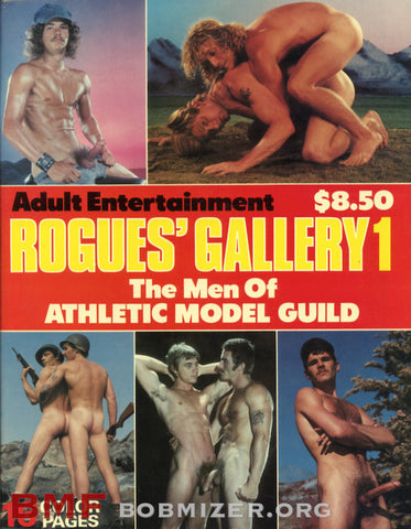 Rogue's Gallery #1