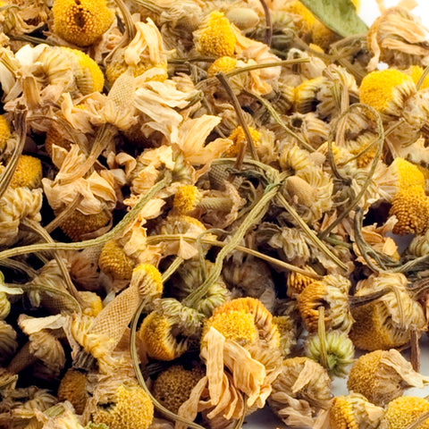 CAMOMILE- Herbal