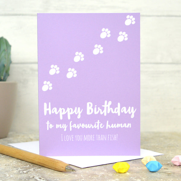 from the cat card, cat birthday card, animal birthday card, cat card
