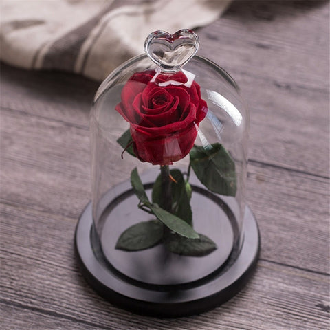 Eternal Rose Flower With Love  Glass Black Case Home Decoration