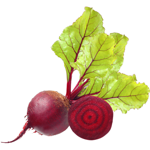 beet root, Dpph, organic, extracts