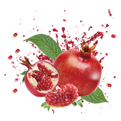 pomegranate, punicalagins