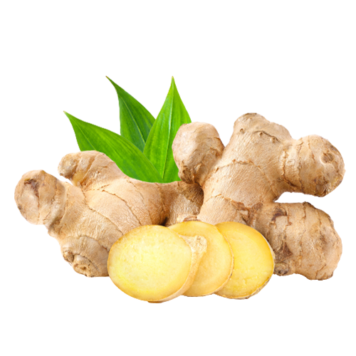 Powerpacked ingredients, ingredients, natural ingredients, natural herbs, organic ingredients, ginger