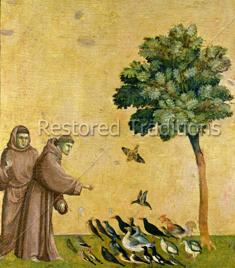 Francis talking to birds