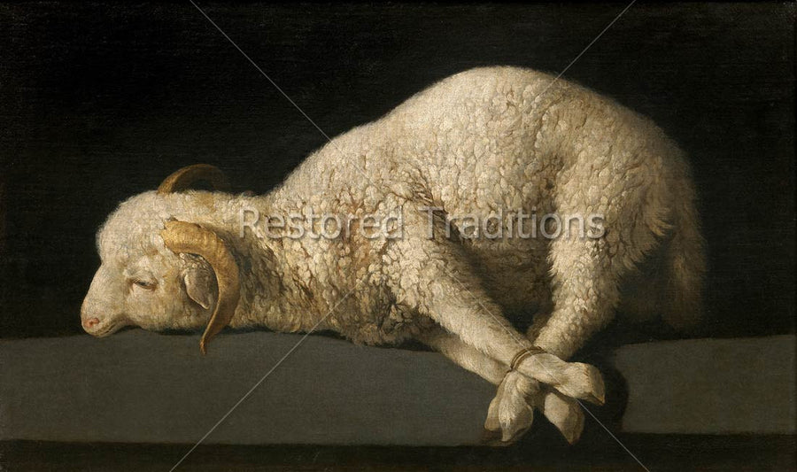 Sacrificial Lamb Symbolizing Christ