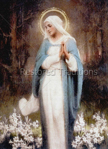 Virgin Mary Among White Flowers