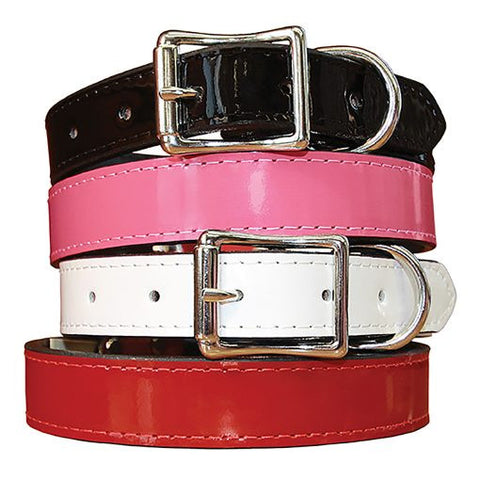 Auburn Manhattan Patent Leather Collar