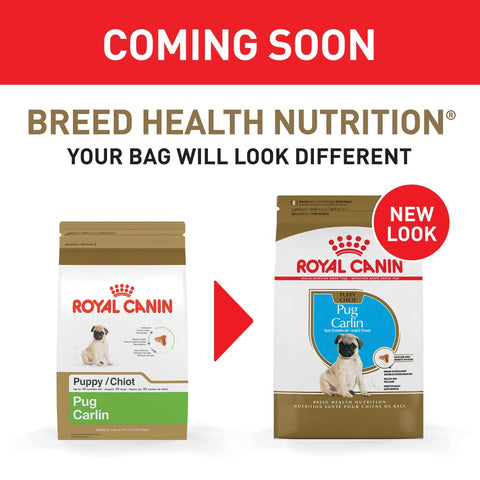 Royal Canin Breed Health Nutrition Pug Puppy Dry Dog Food
