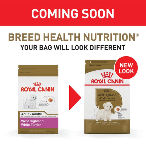 Royal Canin Breed Health Nutrition West Highland White Terrier Dry Dog Food