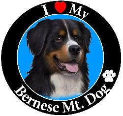 Bernese Mountain Dog Decal Magnet
