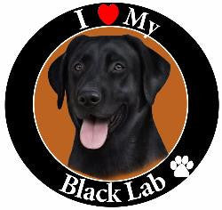 Labrador Retriever (Black) Decal Magnet