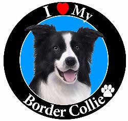 Border Collie Decal Magnet
