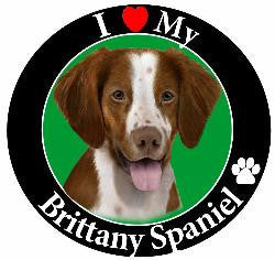 Brittany Spaniel Decal Magnet