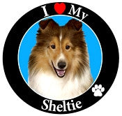 Sheltie Decal Magnet