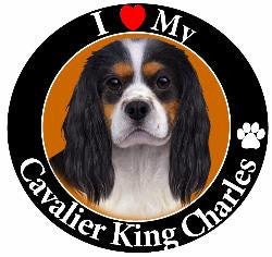 Cavalier King Charles (Black/White & Tan points) Decal Magnet
