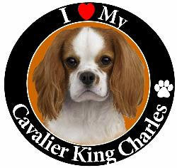 Cavalier King Charles (Tri-Color) Decal Magnet