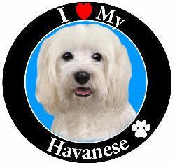 Havinese Decal Magnet