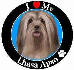 Llhasa Apso Decal Magnet