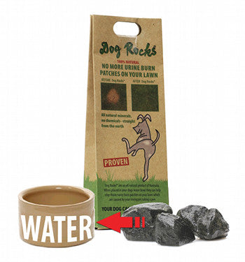 Dog Rocks - Prevent Urine Burn
