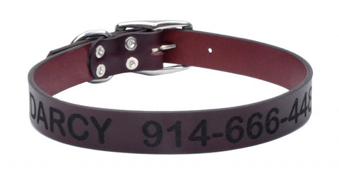 Leather Collar - Large 1