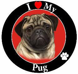 Pug (Fawn) Decal Magnet