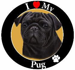 Pug (Black) Decal Magnet