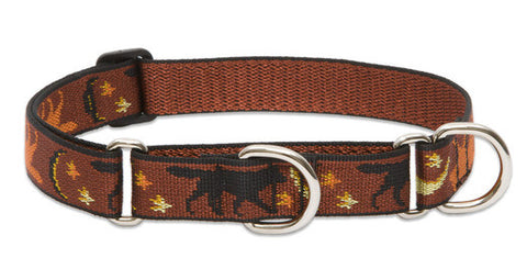 Large Combo Collar 1