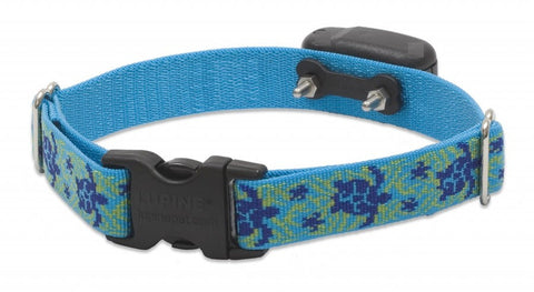 DogWatch Receiver Replacement Collar Turtle Reef