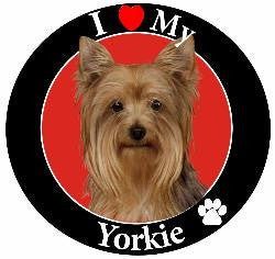 Yorkie Decal Magnet