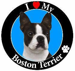 Boston Terrier Decal Magnet
