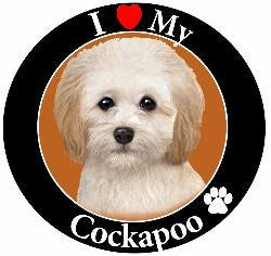 Cockapoo Decal magnet