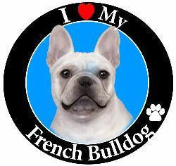 French Bulldog Decal Magnet