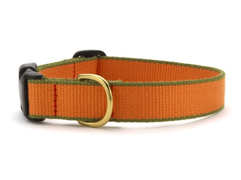 Green Market Tangerine and Pine Green Dog Collar